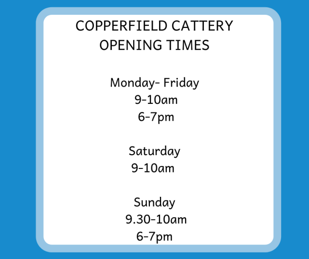 opening times at copperfield cattery in inverness