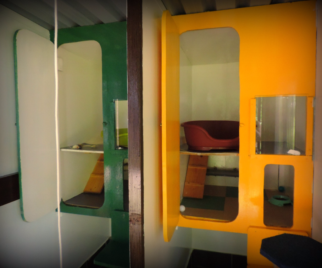 double cabins at copperfield cattery