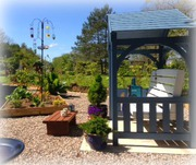 bird garden at copperfield cattery inverness